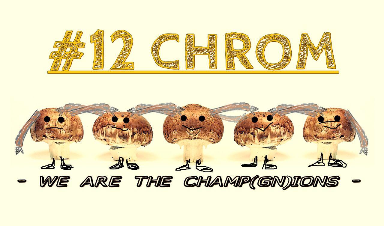 #12chrom